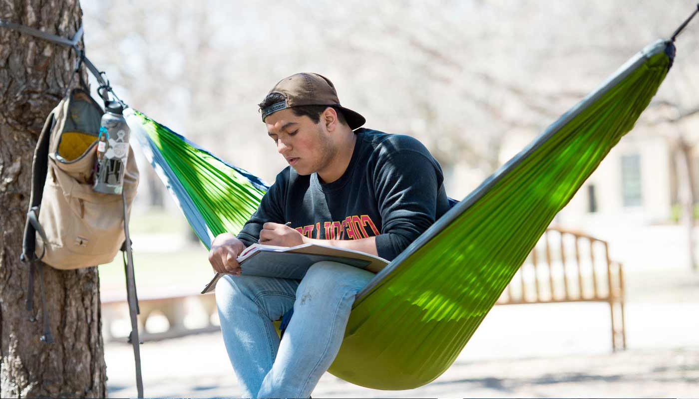 Student sitting on a hammock doing homew要么k